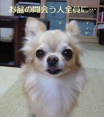blog2013081901.jpg