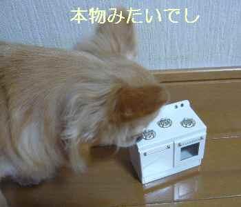 blog2013082704.jpg