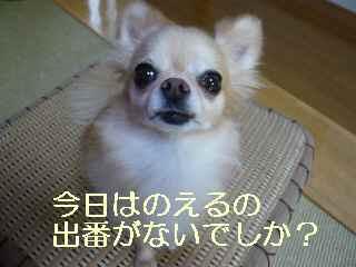 blog2013082903.jpg