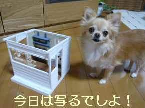 blog2013083002.jpg