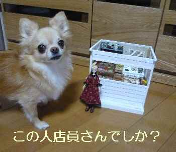blog2013090301.jpg