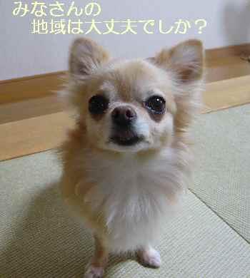 blog2013090402.jpg