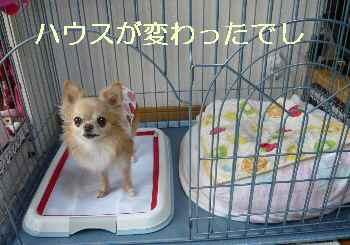 blog2013090501.jpg