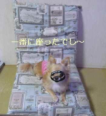 blog2013091801.jpg