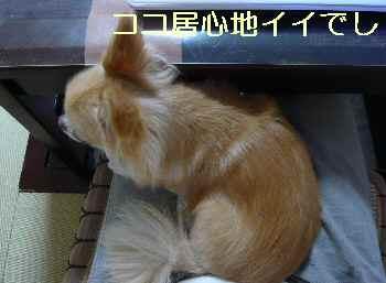 blog2013092005.jpg