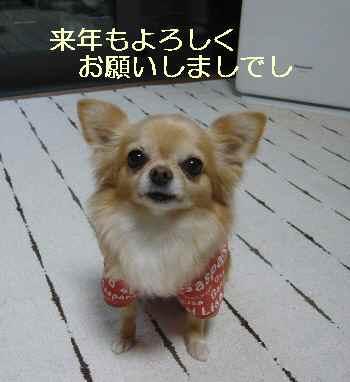 blog2013123101.jpg