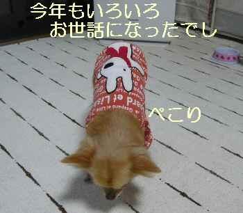 blog2013123102.jpg