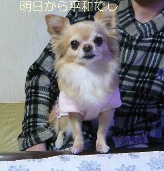 blog2014010501.jpg