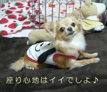 blog2014010703.jpg