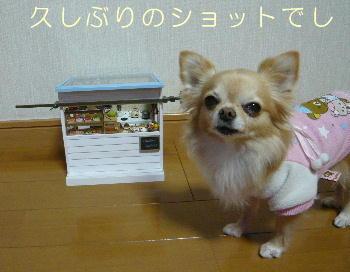 blog2014010901.jpg