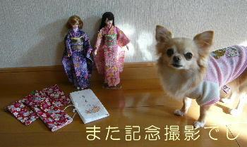 blog2014011002.jpg