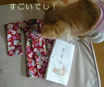 blog2014011003.jpg