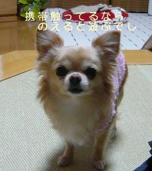 blog2014011402.jpg