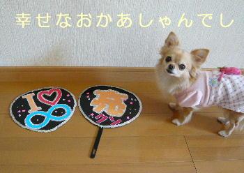 blog2014011702.jpg