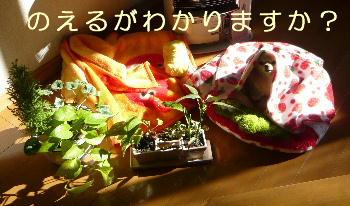 blog2014011901.jpg
