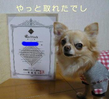 blog2014012001.jpg