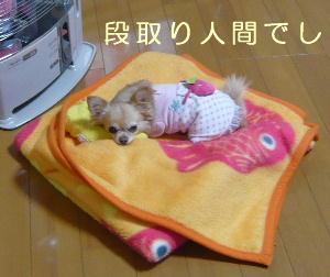 blog2014012104.jpg