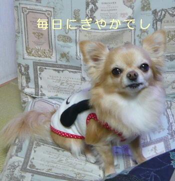 blog2014012304.jpg