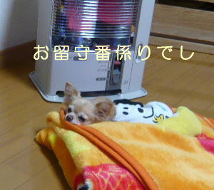 blog2014012503.jpg