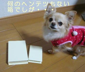 blog2014012801.jpg