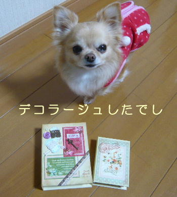 blog2014012802.jpg