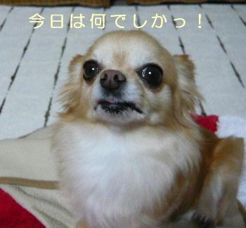blog2014020204.jpg