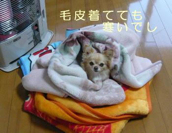 blog2014020501.jpg