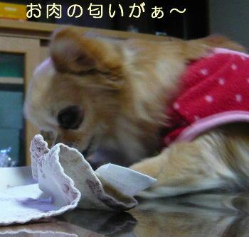 blog2014020701.jpg