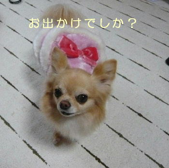 blog2014020801.jpg