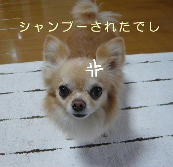 blog2014020802.jpg