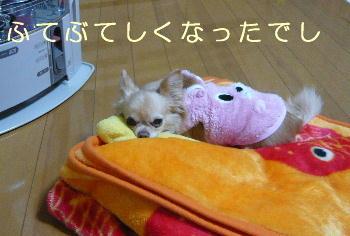 blog2014021008.jpg
