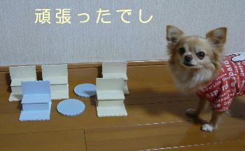 blog2014021201.jpg