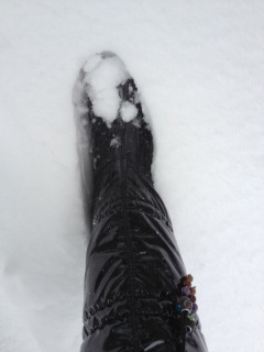 2014豪雪