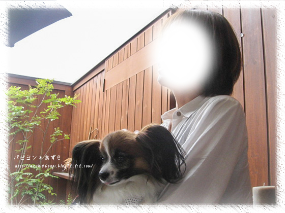20130417_IMG_09.jpg