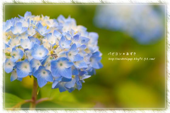 20130609_IMG_71.jpg