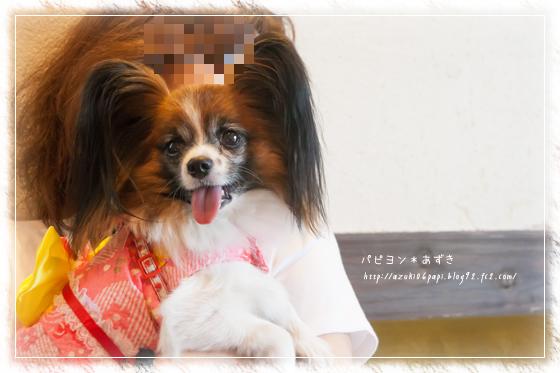 20130727_IMG_13.jpg