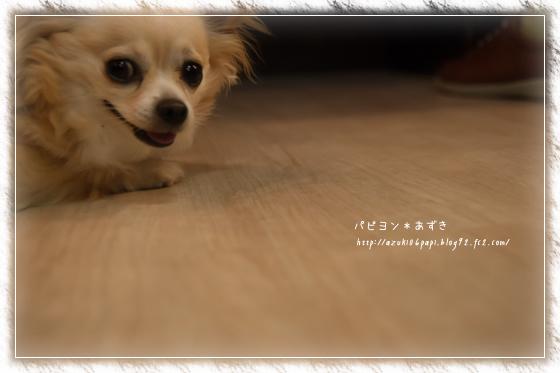 20130812_IMG_18.jpg