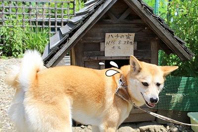 s-takumi21409301-228