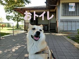 s-miyanoshita141009-CIMG3651