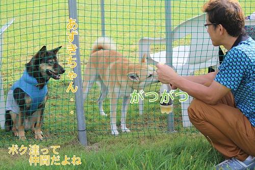 s-sayonara141020-IMG_3511