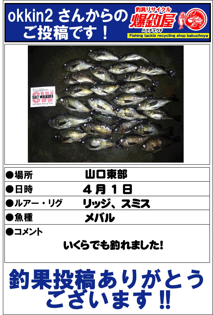 okkin2さん201304162