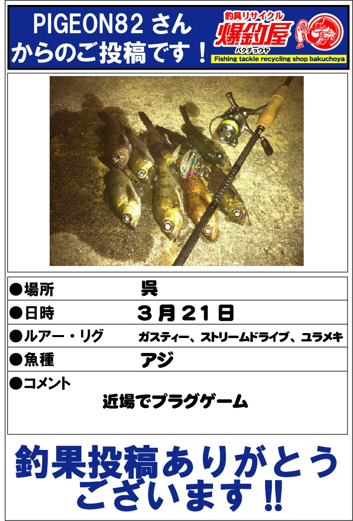 PIGEON82さん201304163