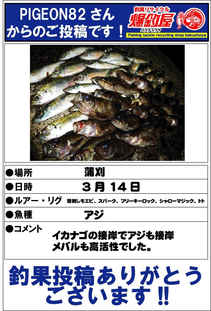 PIGEON82さん201304162
