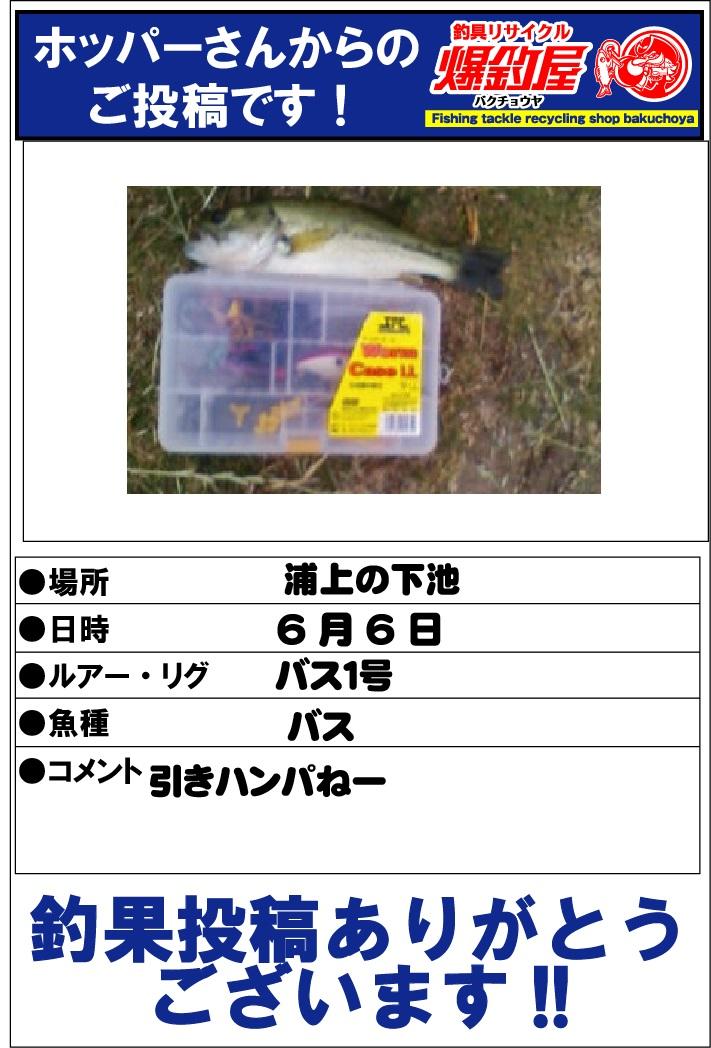 ホッパーさん20130606