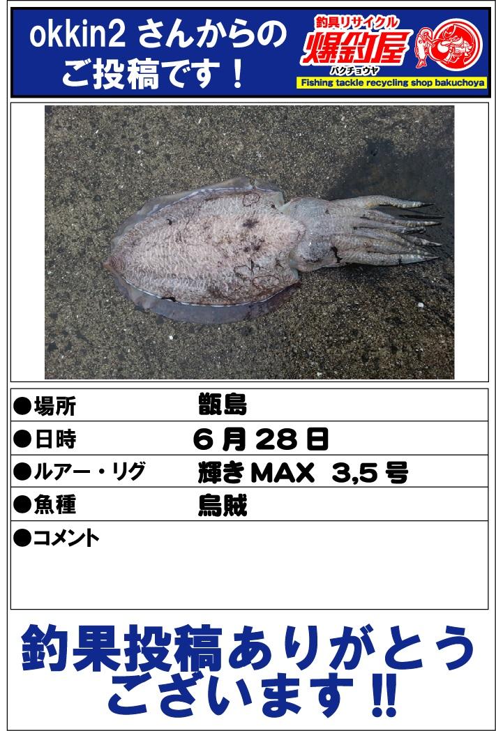 okkin2さん20130628
