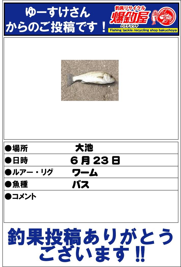 ゆーすけさん20130623