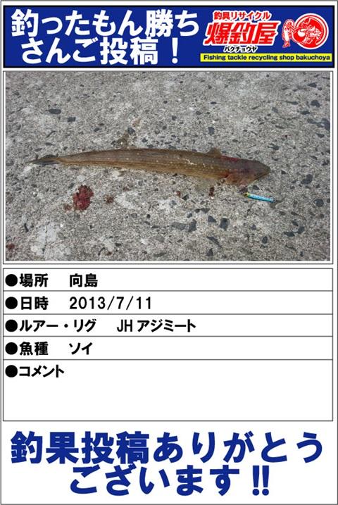 choka20130918_01.jpg