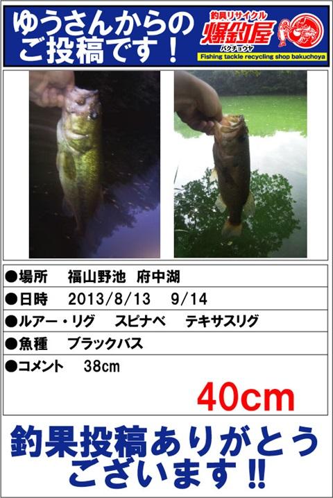 choka20130918_11.jpg