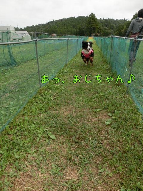 CIMG7691.jpg