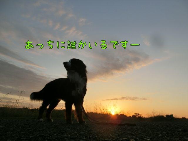 CIMG8277_20141008095018b4a.jpg